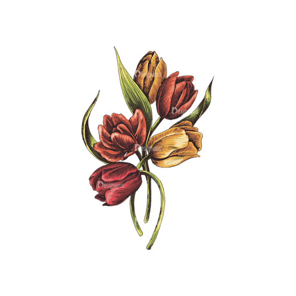 Floral Vector 134 2 5