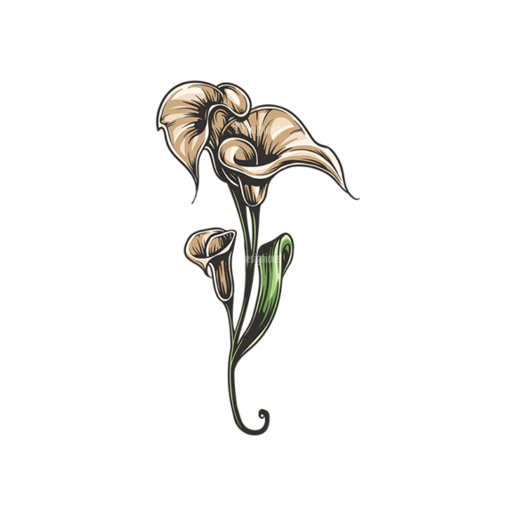Floral Vector 137 4 floral vector 137 4 preview