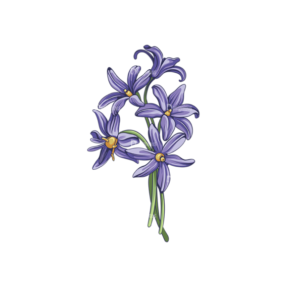 Floral Vector 142 2 5