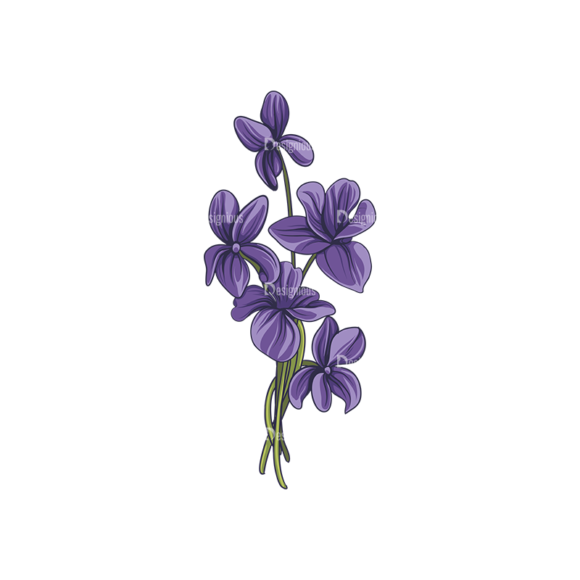 Floral Vector 143 5 5