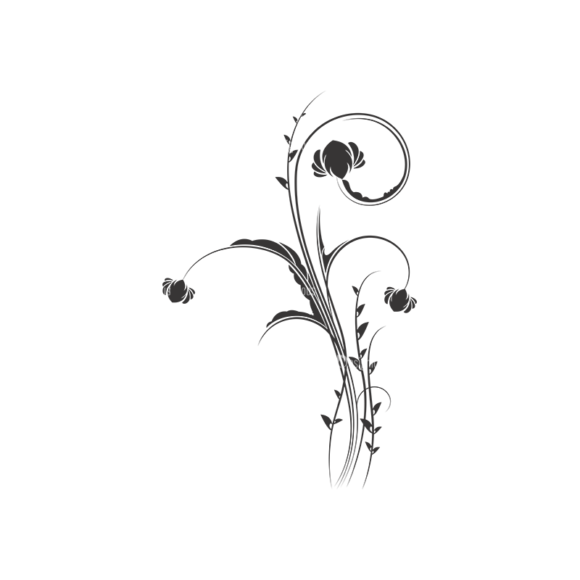 Floral Vector 42 8 1