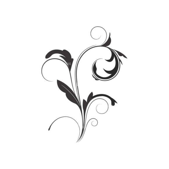 Floral Vector 44 2 1