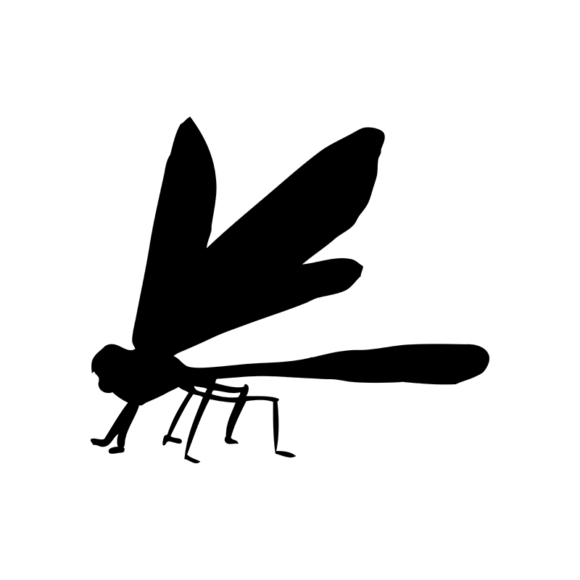 Insects 6 Vector Dragonfly 06 1