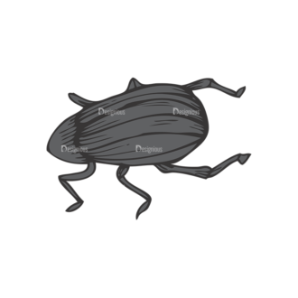 Insects Vector 1 11 Clip Art - SVG & PNG vector