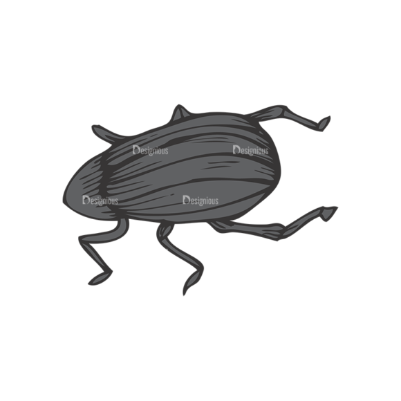 Insects Vector 1 11 1