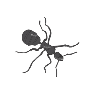 Insects Vector 1 18 Clip Art - SVG & PNG vector