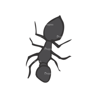 Insects Vector 1 19 Clip Art - SVG & PNG vector