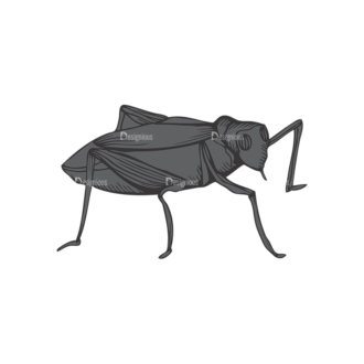 Insects Vector 1 23 Clip Art - SVG & PNG vector