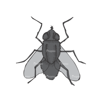 Insects Vector 1 4 Clip Art - SVG & PNG vector