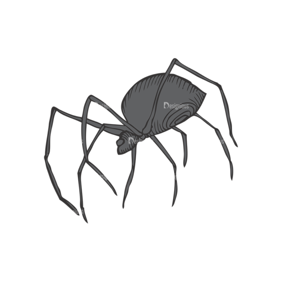Insects Vector 1 7 1