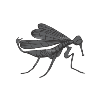 Insects Vector 1 9 Clip Art - SVG & PNG vector