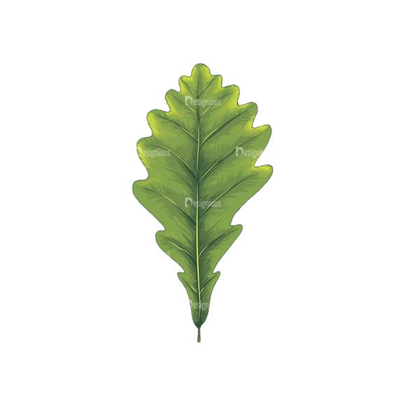 Leaves Vector 2 2 5