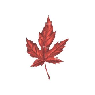 Leaves Vector 2 4 Clip Art - SVG & PNG vector