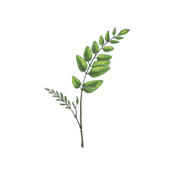 Leaves Vector 2 8 1