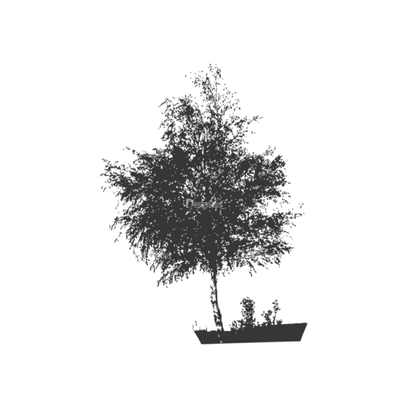 Normal Trees Vector 1 11 1