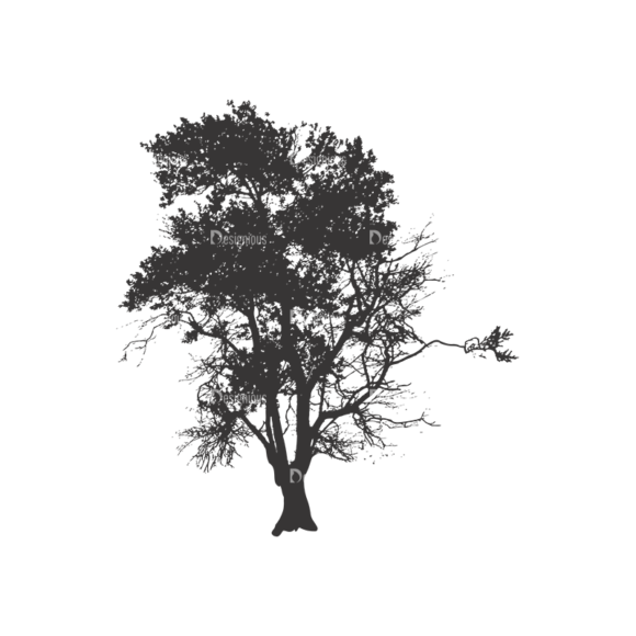 Normal Trees Vector 1 4 1