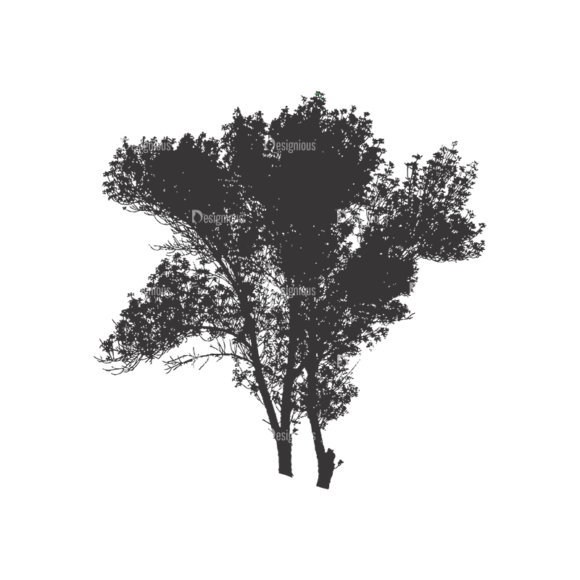Normal Trees Vector 1 7 1