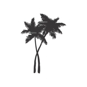 Palm Trees Vector 1 3 Clip Art - SVG & PNG palm