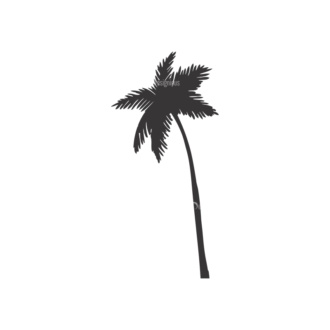 Palm Trees Vector 1 5 Clip Art - SVG & PNG palm