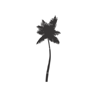 Palm Trees Vector 1 6 Clip Art - SVG & PNG palm