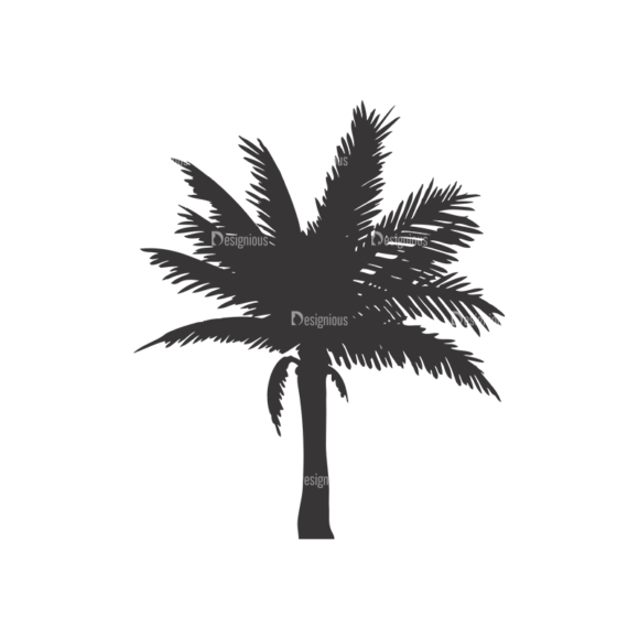 Palm Trees Vector 1 9 1