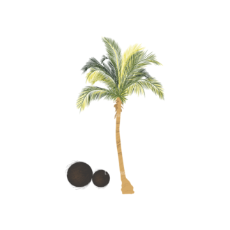 Palm Trees Vector 2 3 Clip Art - SVG & PNG palm