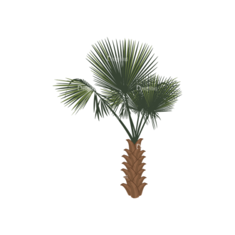 Palm Trees Vector 2 4 Clip Art - SVG & PNG palm