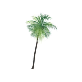 Palm Trees Vector 2 7 Clip Art - SVG & PNG palm