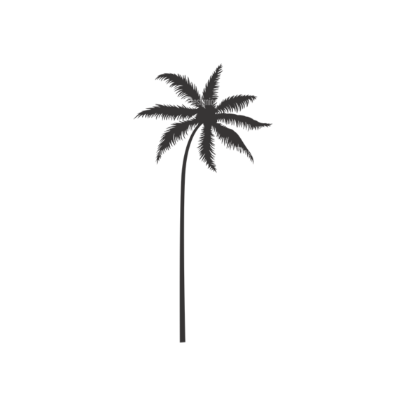 Palm Trees Vector 3 10 1