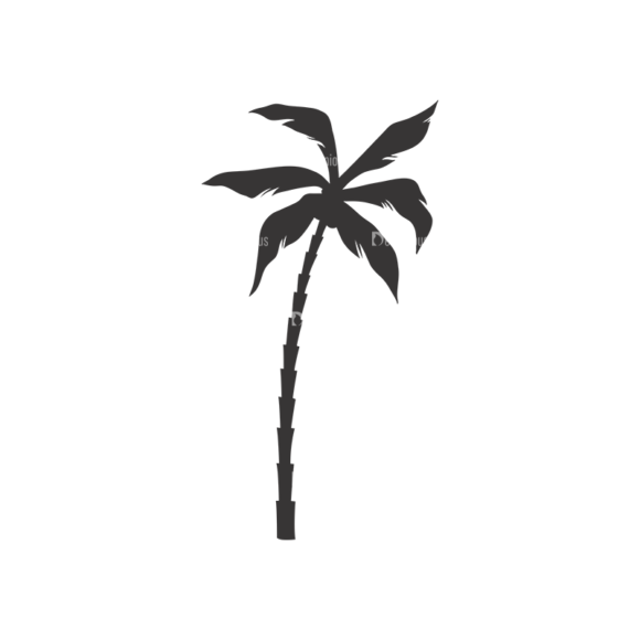 Palm Trees Vector 3 11 1