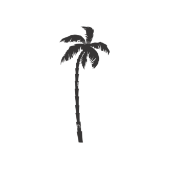 Palm Trees Vector 3 16 Clip Art - SVG & PNG palm