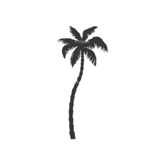 Palm Trees Vector 3 17 Clip Art - SVG & PNG palm