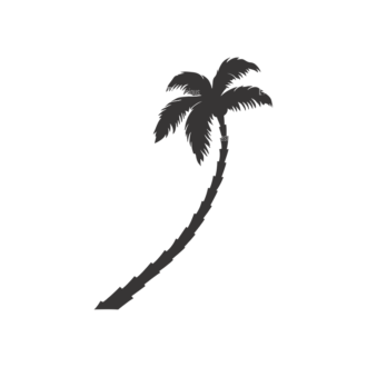 Palm Trees Vector 3 18 Clip Art - SVG & PNG palm