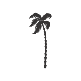 Palm Trees Vector 3 19 Clip Art - SVG & PNG palm