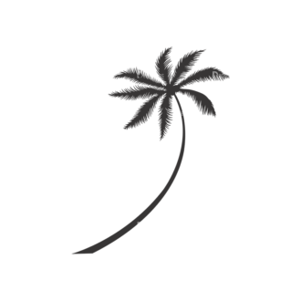 Palm Trees Vector 3 6 Clip Art - SVG & PNG palm