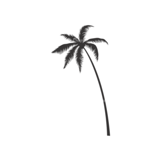 Palm Trees Vector 3 7 Clip Art - SVG & PNG palm