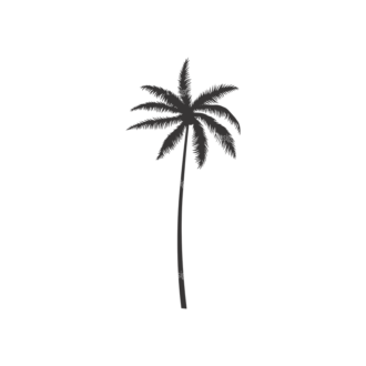 Palm Trees Vector 3 8 Clip Art - SVG & PNG palm