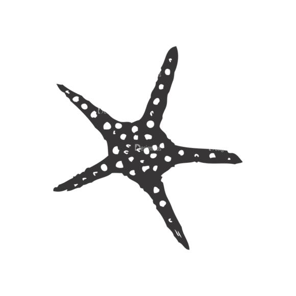 Sea Creatures Vector 1 26 5