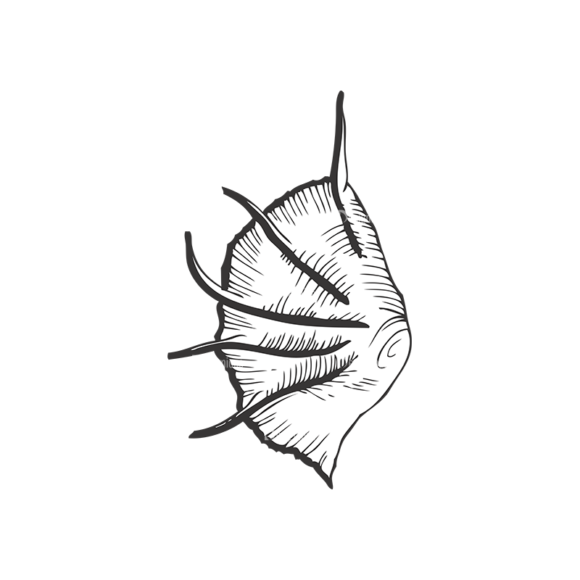 Sea Creatures Vector 1 32 sea creatures vector 1 32 preview