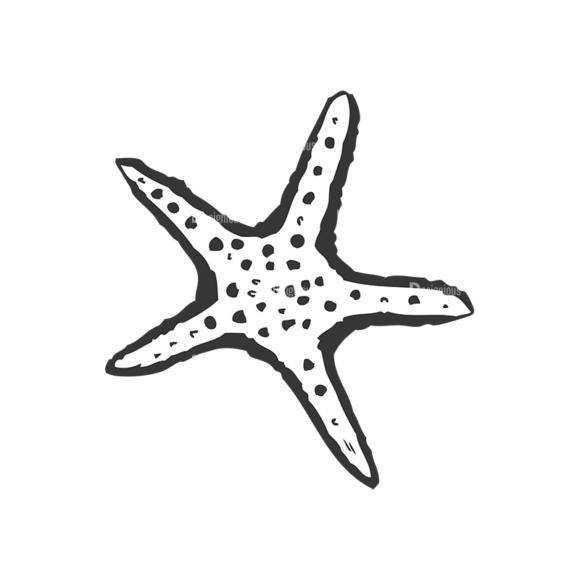 Sea Creatures Vector 1 35 5