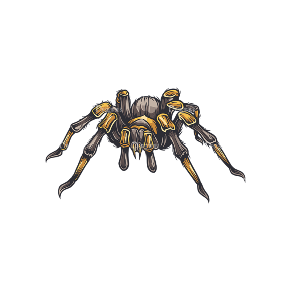 Spiders Vector 1 6 spiders vector 1 6 preview
