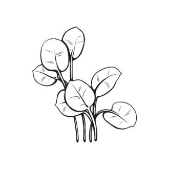 Tropical Plants Vector 1 2 Clip Art - SVG & PNG tropical