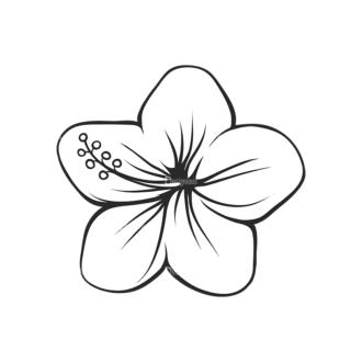 Tropical Plants Vector 2 11 Clip Art - SVG & PNG tropical