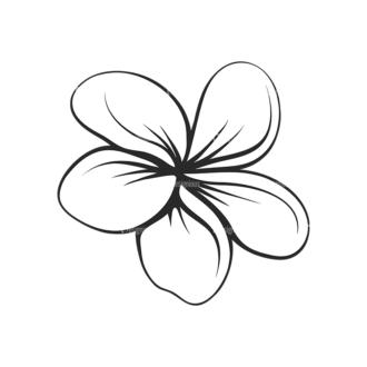 Tropical Plants Vector 2 17 Clip Art - SVG & PNG tropical