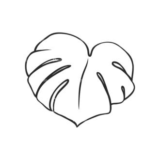 Tropical Plants Vector 2 19 Clip Art - SVG & PNG tropical