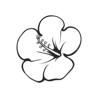 Tropical Plants Vector 2 7 Clip Art - SVG & PNG tropical