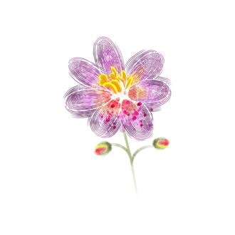 Vector Floral Ornaments 5 Vector Flower 06 Clip Art - SVG & PNG floral