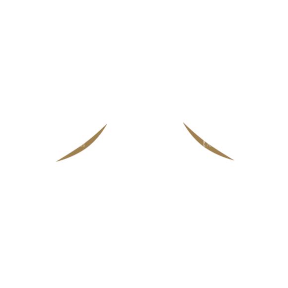 Characters Design Creation Kitt Vector Eyebrow 72 5