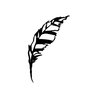 Feathers Set 11 Vector Feather 06 Clip Art - SVG & PNG vector