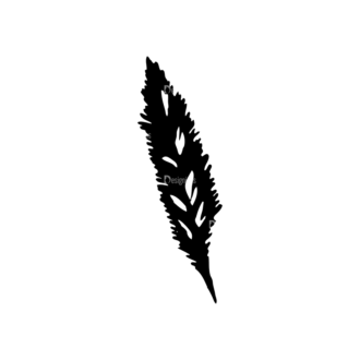 Feathers Set 11 Vector Feather 11 Clip Art - SVG & PNG vector